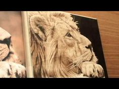 Fur Pyrography - Woodburning of a Lion