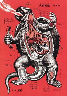Journal of Kaiju Anatomy