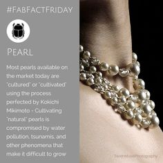 """Did you know that pearls are the only gemstone made by a living organism? True - Pearls ARE gemstones. We celebrate the work of Kokichi Mikimoto who single-handedly and with much perseverance, created the """"cultured"""" pearl industry Cultured Pearls, Jewels, Jewellery, Gemstones, History, Celebrities, Bracelets, How To Make, Inspiration"""