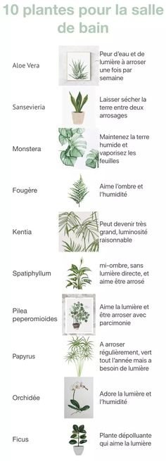 Unique Floral Plastique arrangement plateau avec Vert Humide Oasis Brique et ruban
