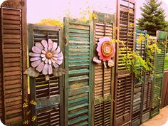 shutter fence...Alexandria Sawyer