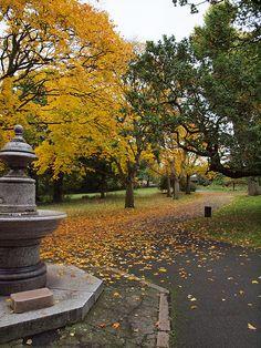 Mayow road park Sydenham London