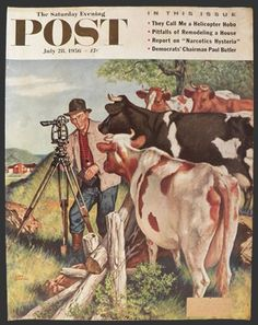1956 Saturday Evening Post Cover ~ Cows Greet Land Surveyor