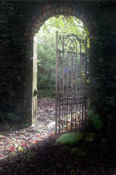 Superb Nature - tulipnight: Secret Garden by Spleencheesemonkey Door Gate, Fence Gate, Fences, Old Gates, Iron Gates, Garden Doors, Garden Gates, Garden Entrance, My Secret Garden