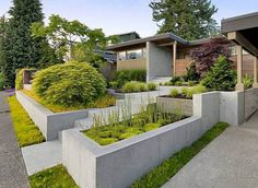 Concrete walls may not immediately spring to mind when you're planning out your front yard landscaping idea. But this clean design may change your mind. If you own a modern home or a mid-century ranch, this kind of austere stepped bed can be paired with fern-like Japanese maples for a soft but structured design. Not only do these beds compliment the lines of the house, but it also allows for the display of focused plantings.