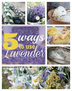 5 Ways to Use Lavender in Your Home