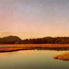 Autumn In Acadia Print by September Wren