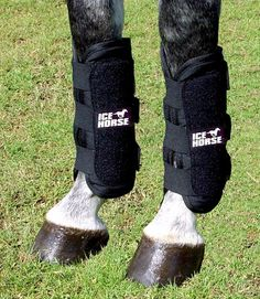 We have the Ice Horse Tendon Wrap - Pair you need at Bit of Britain. See why top riders since 1987 have trusted Bit of Britain for all their horse tack, equestrian clothing, horse blankets and horse supplies of all kinds. Horse Boots, Horse Tack, Ugg Boots, Riding Boots, Horse Therapy, Endurance Training, Outdoor Brands, Hunter Boots, Equestrian