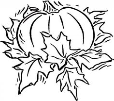 8 Best Pumpkin Coloring Pages images in 2017 | Pumpkin coloring ...