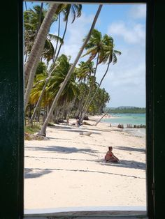 Uma janela na Praia dos Carneiros (PE)