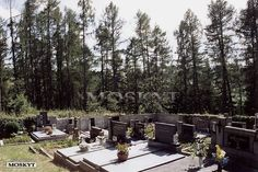 kout hřbitova kam se nedoporučuje chodit