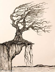 "Ink Drawing, ""Aged to Perfection"", wind blown tree poised on a cliff, ocean and land below"