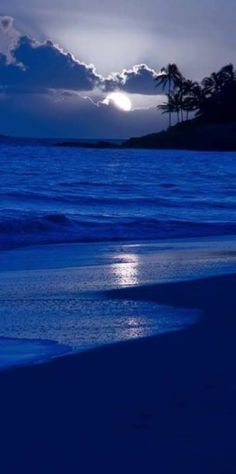Beautiful Blue Night on the beach
