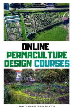 A list and description of the top online permaculture courses which focus on food forestry and sustainable living. Permaculture Design Course, Permaculture Courses, Organic Gardening, Vegetable Gardening, Veggie Gardens, World Water, Forest Garden, Urban Homesteading, Urban Farming