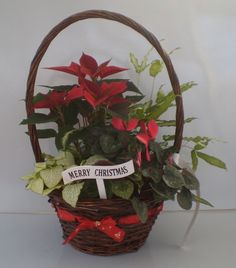 24CM CHRISTMAS RIBBON BASKET (X443)