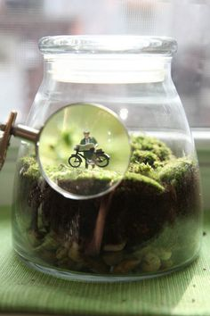 I kind of want to make a terrarium. But only if it has some little figurines in it.
