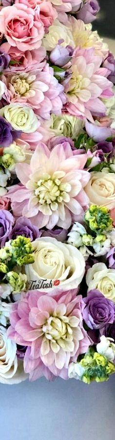 ❈Téa Tosh❈ Happy Flowers, Pretty In Pink, Beautiful Flowers, Box Roses, Bloom Blossom, Diy Wallpaper, Love Garden, Bouquet, Happy Weekend