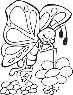 coloring pages for butterflies kidsfreecoloringnet free download kids coloring printable - Printable Butterfly Coloring Page