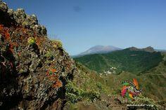 Tenerife senderos......: TENERIFE SENDEROS : MIRADOR DE BARRACAN - TENO ALT...