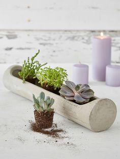Concrete Planter Centrepiece #nordichouse #concrete #planter