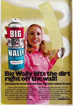 Big Wally Wall Cleaner.