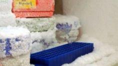 Une astuce géniale pour empêcher la formation de givre et glace dans votre congélateur !