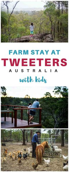 Queensland farm stay a few hours west of Brisbane ideal for family weekend away.