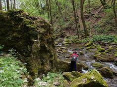 A Bakony mélyén, Bakonybél közelében megbúvik egy 300 méteres szurdok, amiért érdemes több &oa Suho, Hungary, Budapest, Hiking Boots, Traveling, Walking Boots, Trips, Travel, Walking Shoes