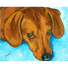 Dachshund Artwork Prints | Red Dachshund on Blue Rug Dog Art 8x10 Print by Dottie Dracos ...