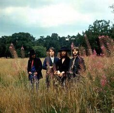 The Beatles last photo session 1969...damn you, Yoko!