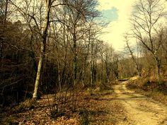 trekking to Camerata, Monticiano