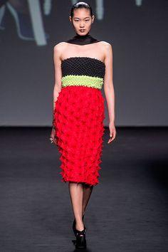 Christian Dior Haute Couture - Paris 2013/2014