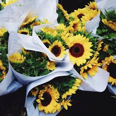✫ ✫ ✫ ✫ ♥ ❖❣❖✿ღ✿ ॐ ☀️☀️☀️ ✿⊱✦★ ♥ ♡༺✿ ☾♡ ♥ ♫ La-la-la Bonne vie ♪ ♥❀ ♢♦ ♡ ❊ ** Have a Nice Day! ** ❊ ღ‿ ❀♥ ~ Th 24th Sep 2015 ~ ~ ❤♡༻ ☆༺❀ .•` ✿⊱ ♡༻ ღ☀ᴀ ρᴇᴀcᴇғυʟ ρᴀʀᴀᴅısᴇ¸.•` ✿⊱╮