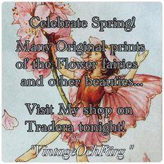 #blomsterälvor #flowerfairies #cecilymarybarker #vintage #prints #vintagestyle #älva #älvor #vår #spring #flower #blomma #butterflyvintage