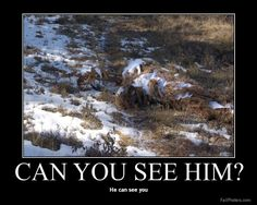 Can you see him? He can see you