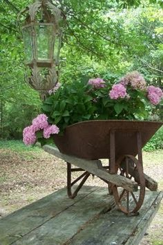 a rusted old wheel barrow turned into a fabulous planter and garden feature.