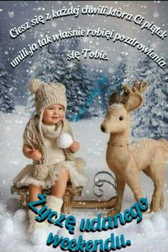 Happy Christmas Wishes, Religion, Teddy Bear, Toys, Pictures, Animals, Good Morning, Activity Toys, Photos