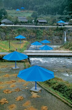 Christo & Jeanne-Claude, The Umbrellas