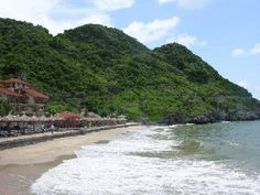 Dragon Cruise 3 days 2 nights - Viet Nam Typical Tours