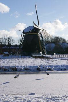 Molen de Vlieger, Voorburg, the Netherlands.