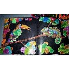 Instagram media lcmorgado - livrodecolorir#florestamagica#jardimsecreto#oceanoperdido#fabercastell#stabilo#tetapia#desenho#lapisdecor