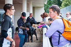 Tag der offenen Tür 2015 :: Blindenhundeschule