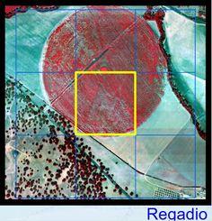Exemplo de um Pivot de regadio em falsa cor. Imagem IRS-P6.AWiFS.