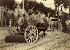 Barcelona (1907-1908), Frederic Ballell: Rambla de Santa Mónica. Servicio de riego y limpieza.