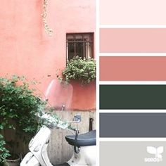today's inspiration image for { color view } is by @colourspeak_kerry_ ... thank you Kerry for another incredible #SeedsColor photo share!