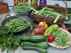 ❤️ Vegetables