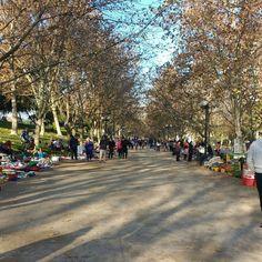 Feria Libre en Parque de LosReyes