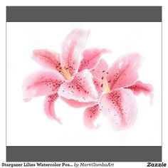 Stargazer Lilies Watercolor Poster | Zazzle