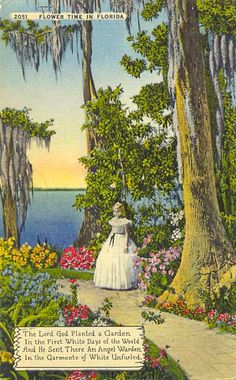 """Old school Florida"" ... Cypress Gardens ... We loved it, we miss it,"