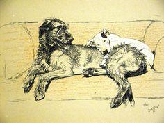 Cecil Aldin Execration Bull Terrrier Irish Wolfhound 1929 Dog Print